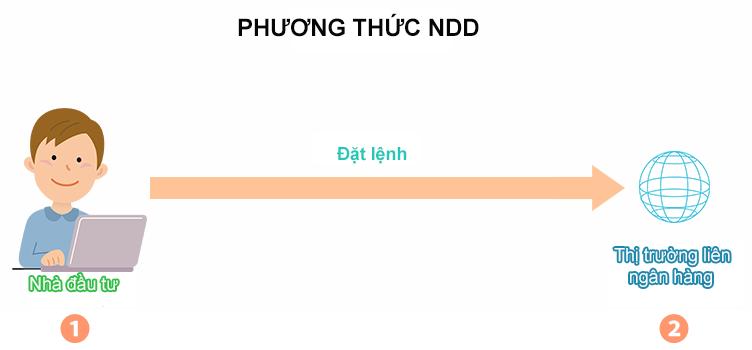 Cơ cấu của nhà môi giới giao dịch NDD